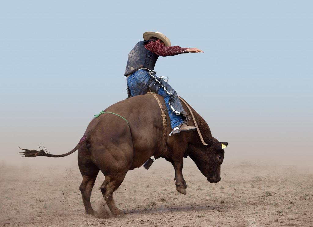 person riding a bull